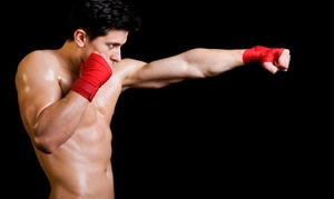 Abnormal Aggression Mixed Martial Arts: Two Weeks of Gym Membership at Abnormal Aggression Mixed Martial Arts (65% Off)