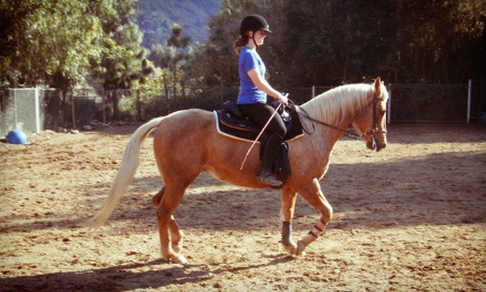 Cherokee Ranch - Shadow Hills: One, Three, or Six 30-Minute Private Horseback-Riding Lessons at Cherokee Ranch (Up to 61% Off)