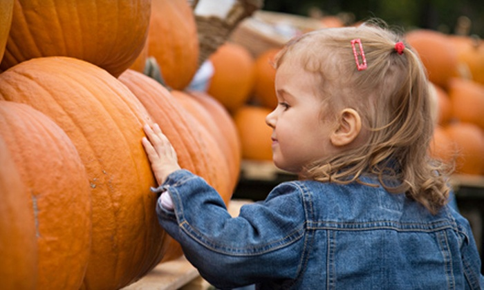 Crooked Pines Farm - Eatonton: 2 Petting Farm Admissions, 1 Large Pumpkin (Or 2 Medium), Hayride for 2, Two Arts & Crafts Kits, and 1 Tshirt