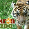 $6 for Two Admissions to the Akron Zoo