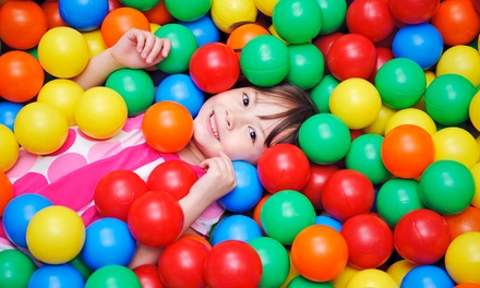 Play Paradise Entry Adult with One $7, Two $11 or Three Kids $15 at Yard Apes Adventure Playground $29 Value