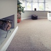 Up to 76% Off Steam Carpet Cleaning