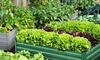 Outdoor Raised Garden Planter Bed