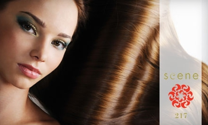 Scene 217 - Little Italy: $47 for an Aveda Gloss Treatment and Blow-Dry at Scene 217 Salon ($95 Value)