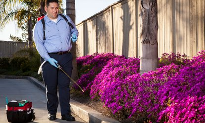 image for Infestation Inspection and Treatment or Rodent Bait Stations from White Line Pest Management (Up to 61% Off)