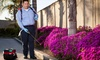 Captain Mosquito: One or Six Outdoor Mosquito Control Application Services from Captain Mosquito (Up to 56% Off)