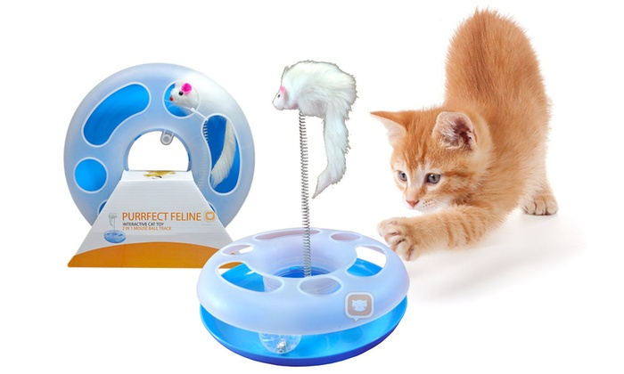 Up To 40 Off On 2 In 1 Interactive Cat Toy Groupon Goods