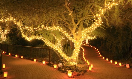 One, Two or Three Strings of 50, 100 or 200 LED SolarPowered Fairy Lights