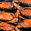 Up to 56% Off Seafood at Crab King of Augusta