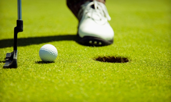 AuseGolf - Multiple Locations: One, Three, or Six Private Golf Lessons from AuseGolf (Up to 53% Off)