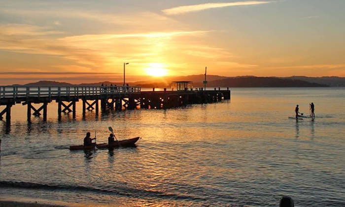 The Boatshed - Days Bay - Lower Hutt: 1-Hour Stand-Up Paddleboard Hire for 1 ($17), 2 ($25) or 4 People ($50) at The Boatshed - Days Bay (Up to $100 Value)
