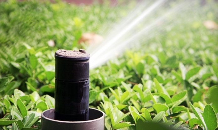 GreenBean Landscapes - Closeburn - Glenkirk: $32 for Irrigation or Lawn-Sprinkler Maintenance ($65 Value) or a Shrub and Plant Treatment ($85 Value) from GreenBean Landscapes