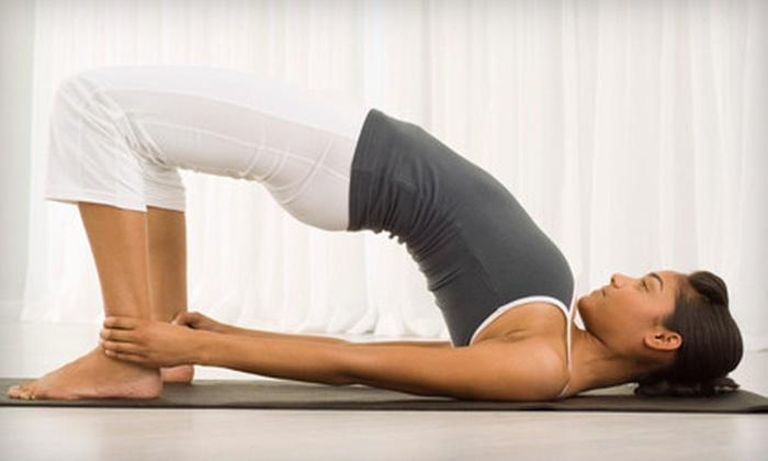 The Yoga Institute of Miami - Suniland: 1, 5, 10, or 18 Classes at The Yoga Institute of Miami (Up to 65% Off)