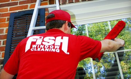 Fish Window Cleaning - Fish Window Cleaning in