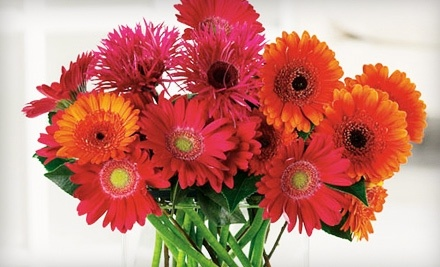 Stensland Events: $30 Worth of Fresh Flowers - Stensland Events in North Liberty