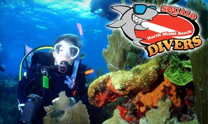 Squalo Divers - Miami: $69 for One Pool Dive Lesson and Two Ocean Dives at Squalo Divers