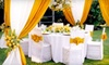 Exquisite Party Rentals: $39 for $100 Worth of Party-Equipment Rental from Exquisite Party Rentals