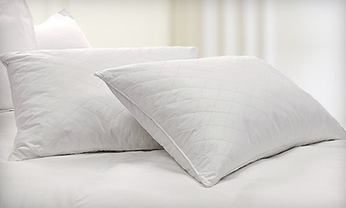 Two-Pack of Natural-Fill Pillows: Two-Pack of Smooth or Quilted Natural-Fill Pillows (52% Off)