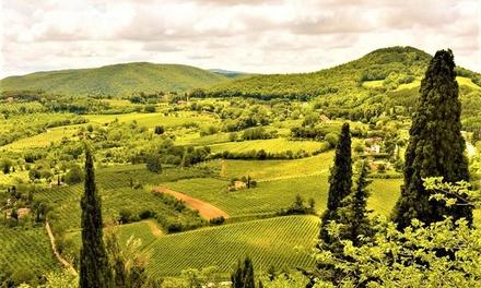 Arezzo: 1 o 2 notti con mezza pensione e degustazione opzionale a 149€euro