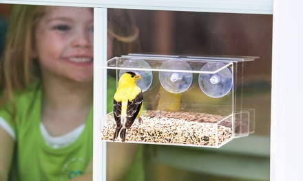 Window Bird Feeders in Patio and Cottage Styles