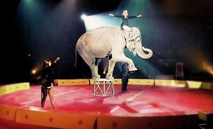 Circus Mondo at MTS Centre on Fri., March 30 at 7PM, or Sat., March 31 at 11AM, 3PM, or 7PM: General Admission - Circus Mondo in Winnipeg