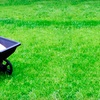 55% Off Lawn Fertilization or Insect Treatment