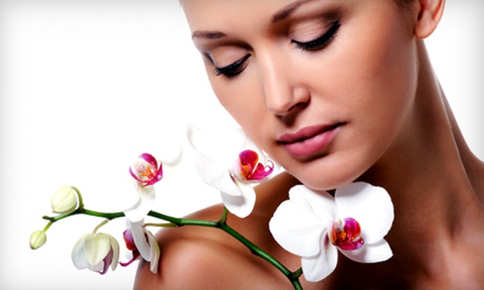 Renee Day Spa - Near North Side: $95 for Three European Facials at Renee Day Spa (Up to $195 Value)