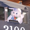 Up to 20% Off Admission to Bunny Train