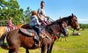 Up to 35% Off One-Hour Riding Lessons at Sunshine Acres Ranch