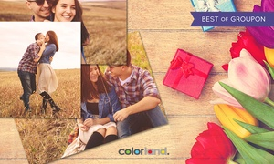 Colorland: Od 24 zł: pakiet nawet 1000 odbitek Premium 10x15 cm w jakości HD na Colorland.pl