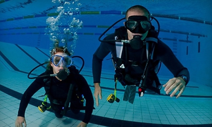 The Dive Shop - Brookland: Discover Scuba Class for One or Two with Equipment at The Dive Shop (Up to 60% Off)