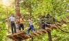 Tree Experience Rescaldina - TREE EXPERIENCE (RESCALDINA): Parco Avventura Tree Experience di Rescaldina: fino a 4 ingressi per adulti e bambini (sconto fino a 56%)