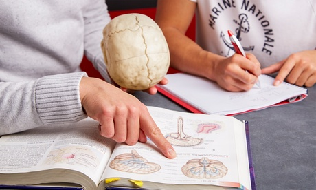 $99 for $224 Worth of Services - Best Brains of Algonquin