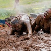 45% Off Entry to The Dirty Dash