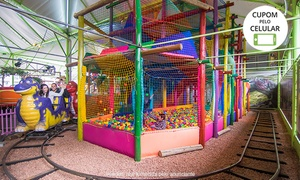 Parque Play House Florybal: Ingresso com 10 ou 16 créditos para o Parque Play House Florybal - Canela