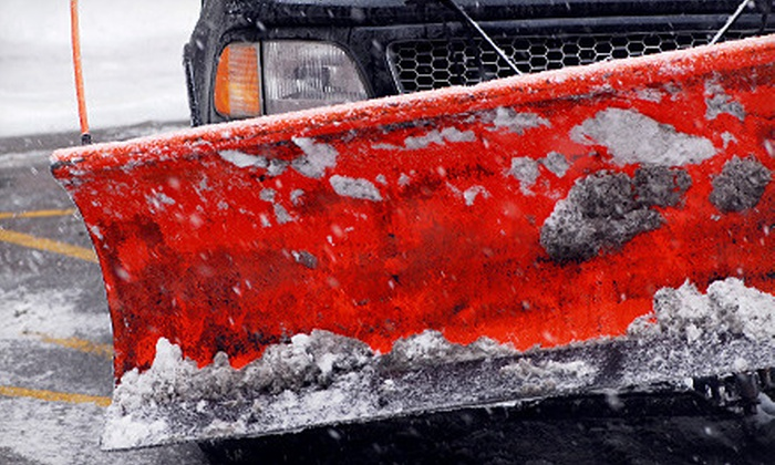 Panda Plowing - Multiple Locations: $49 for Two Snow-Removal, Salting, and De-Icing Services from Panda Plowing ($150 Value)