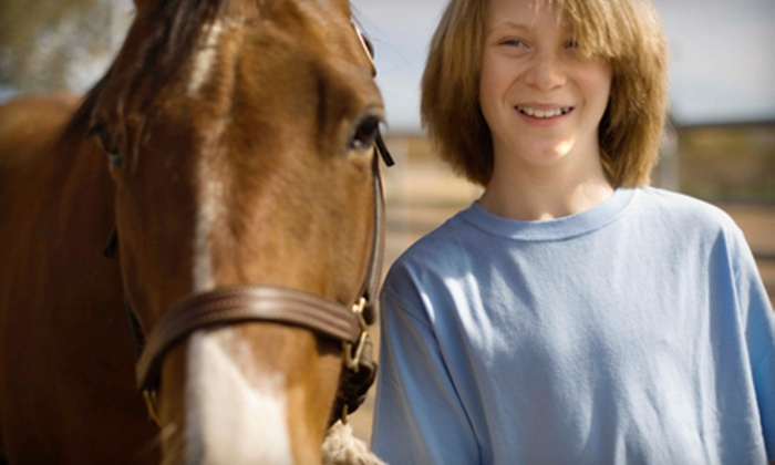 Gallery Farms - Slaughterville: $52 for an Introductory Horseback-Riding Lesson from Gallery Farms in Noble ($105 Value)
