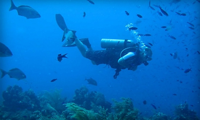 Wateree Dive Center - Columbia: $25 for Introduction-to-Scuba-Diving Course at Wateree Dive Center ($50 Value)