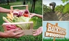 Backyard Produce: $12 for $24 Worth of Local and Organic Produce Delivered to Your Door from Backyard Produce