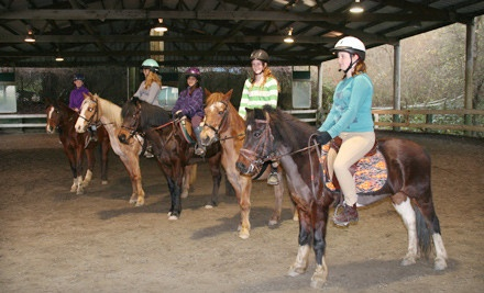 4 Consecutive Weekly Small-Group Riding Lessons (a $260 value) - Willow Pond Ranch in Soquel