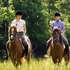 Up to 60% Off Horseback Rides or Lessons in Morristown