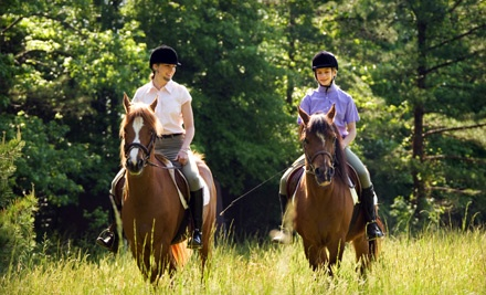 Guided Trail Ride or Private Lesson for 2 (a $160 value) - Seaton Hackney Stables in Morristown