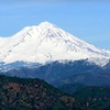 Up to 56% Off at The Woodsman Hotel and Lodge in Mount Shasta, CA