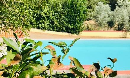 Toscana: camera in mezza pensione e attività in agriturismo per 2 a 59€euro