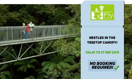 $15 for Treetop Adventure Walk for Child or Adult at Illawarra Fly Up to $25 Value