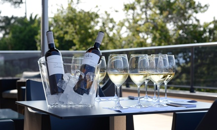 Visita a la bodega para 2 o 4 con cata, maridaje gourmet y obsequio de una botella de vino desde 17,95 € en Adega Eidos