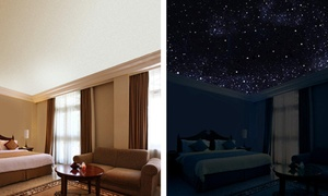 5 Star Ceilings: $609 for $999 Worth of Art-House Films — 5 Star Ceilings