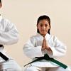 88% Off Martial-Arts Classes