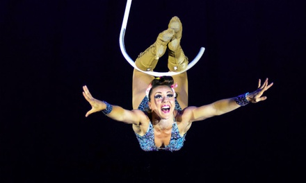 Gerry Cottle's WOW Circus