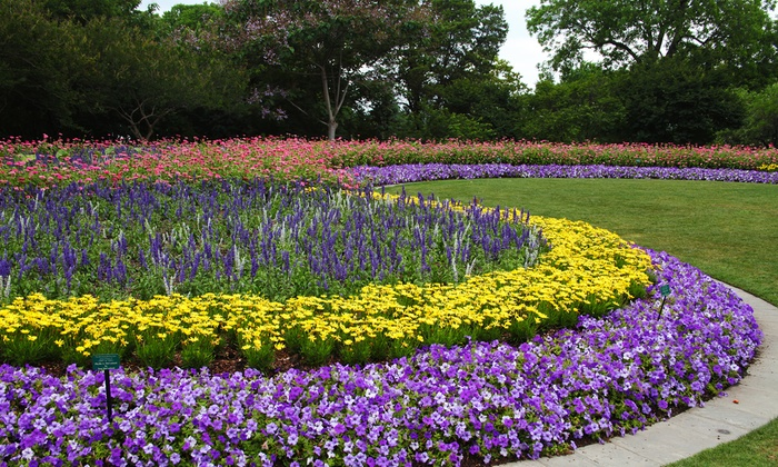... Dallas Arboretum And Botanical Garden   The Dallas Arboretum: General  Admission For One Or Two